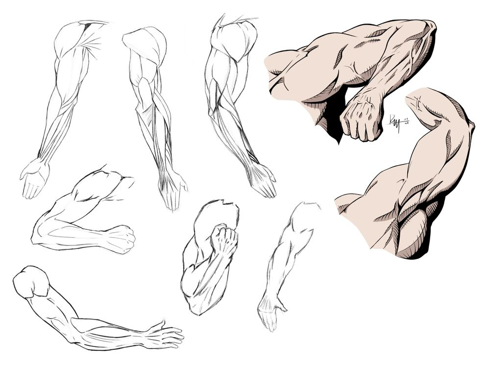 Dynamic Arm Poses - RM - 04/20 - image 3 - student project