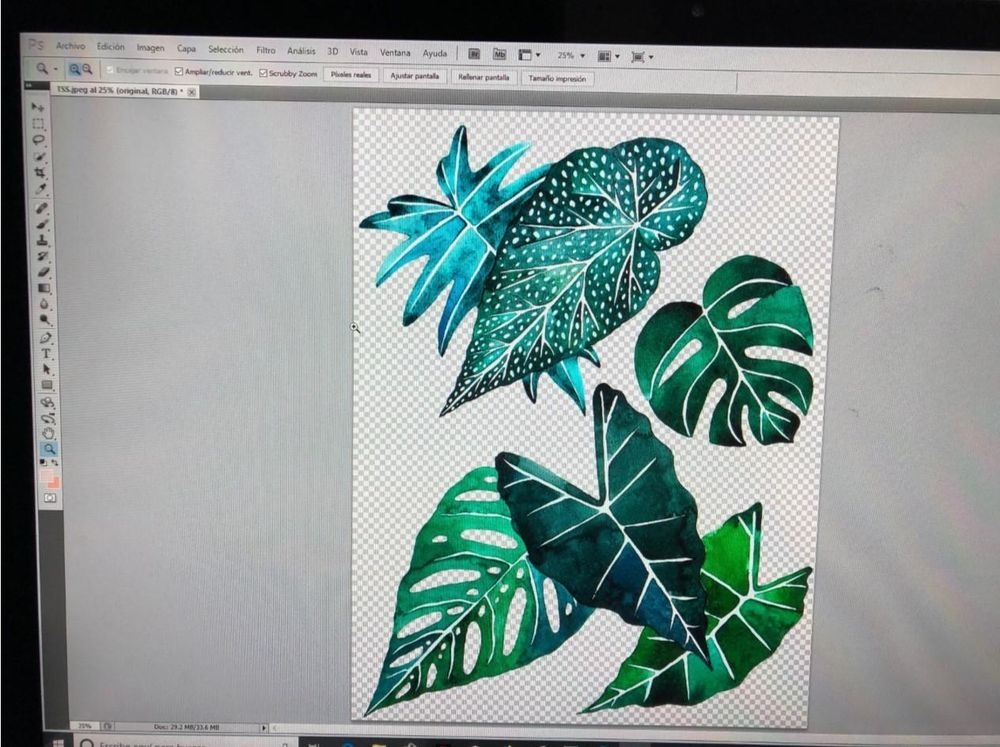 Tropical Leaves & Photoshop - image 2 - student project