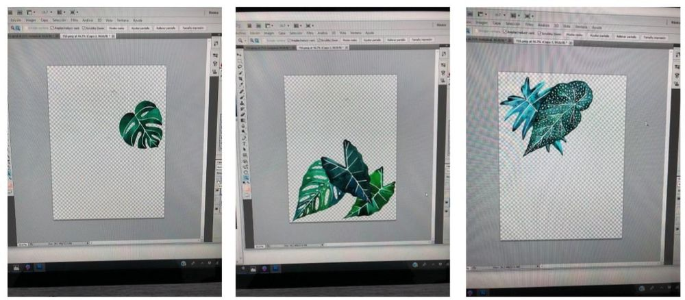 Tropical Leaves & Photoshop - image 3 - student project