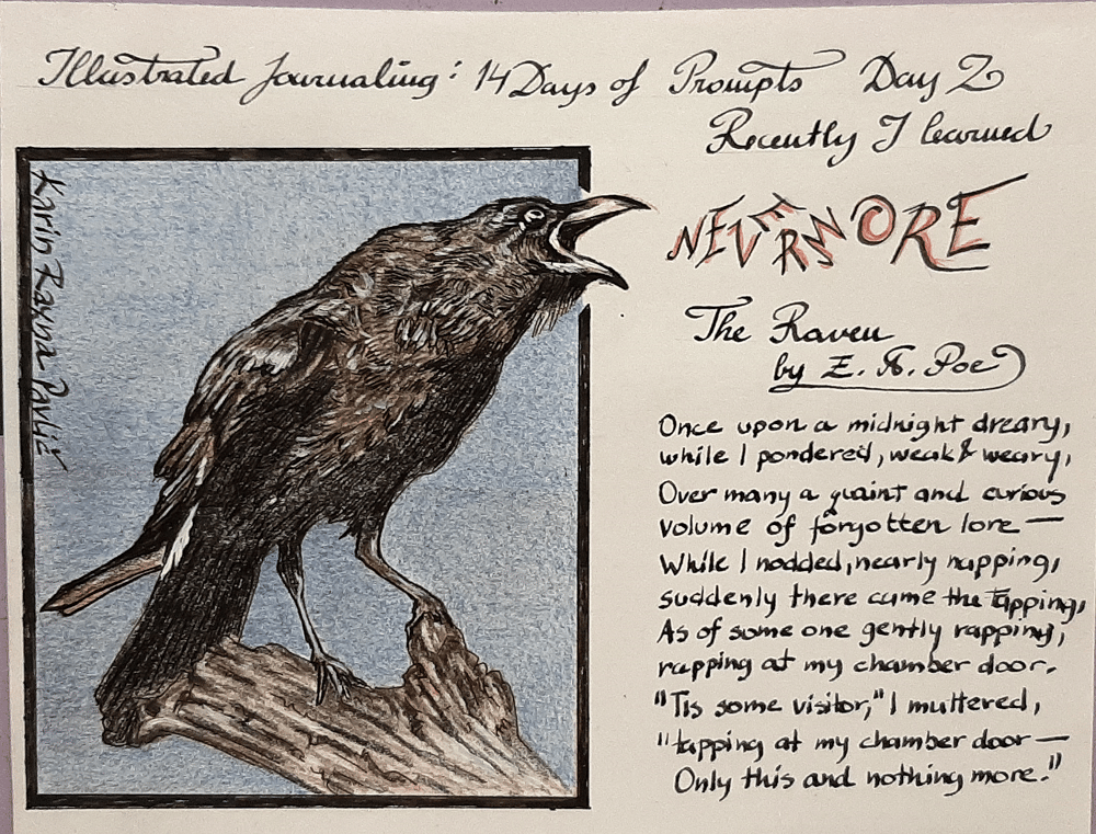 Illustrated Journaling - 14 Days of Prompts with Dylan Mierzwinski - image 5 - student project