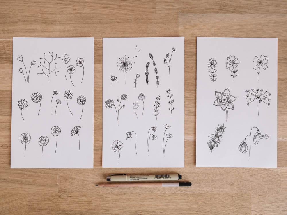 Botanic flowers  - image 1 - student project