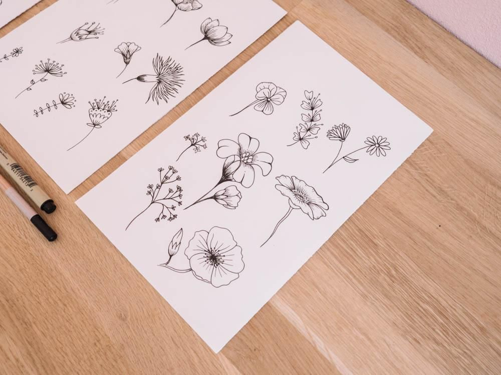 Botanic flowers  - image 3 - student project