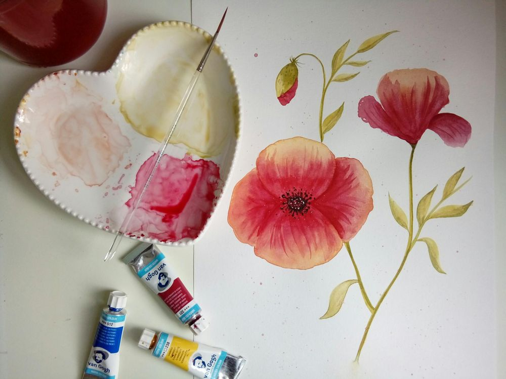 Watercolor Poppy - image 1 - student project