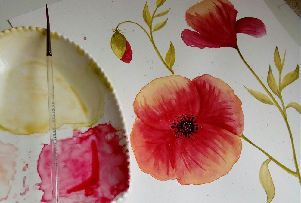 Watercolor Poppy - image 2 - student project