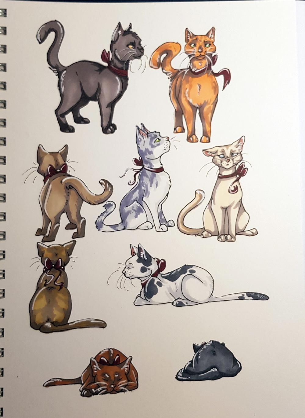 Sketchbook Cats - image 3 - student project