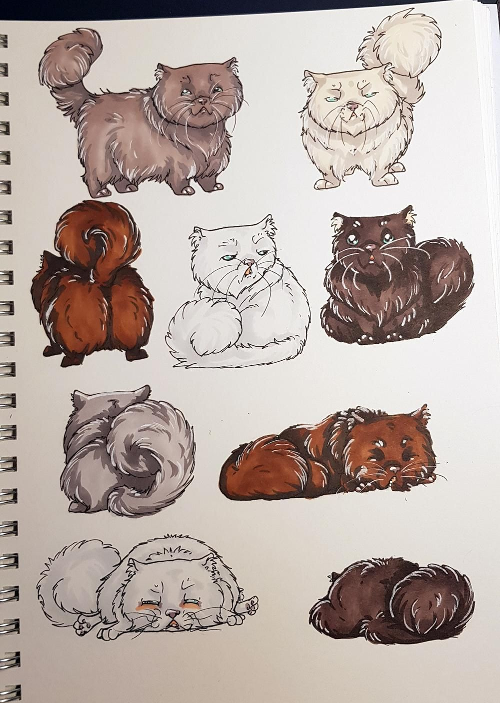 Sketchbook Cats - image 2 - student project
