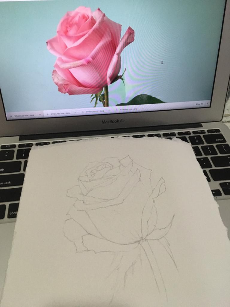 Watercolour Rose - image 4 - student project