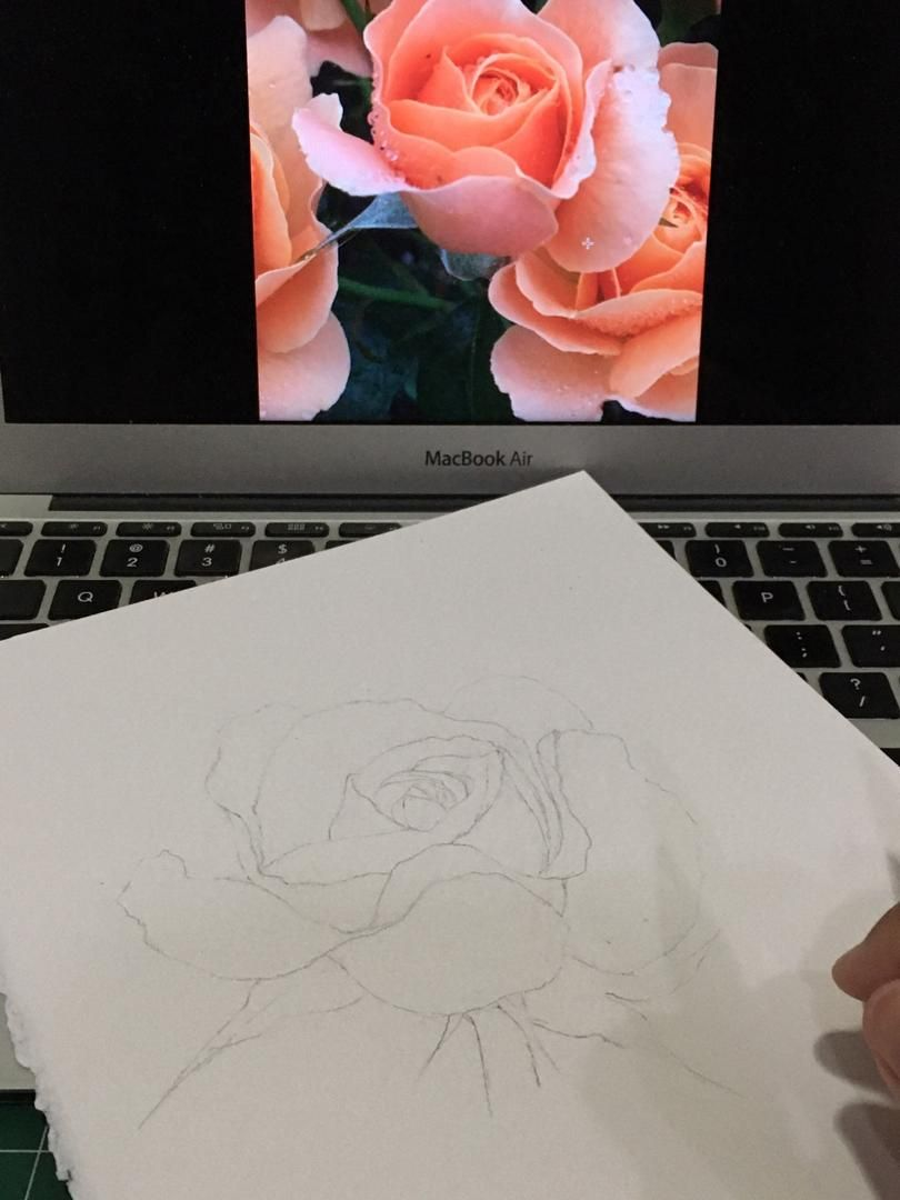 Watercolour Rose - image 1 - student project