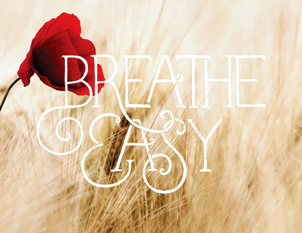 Breath Easy - image 1 - student project
