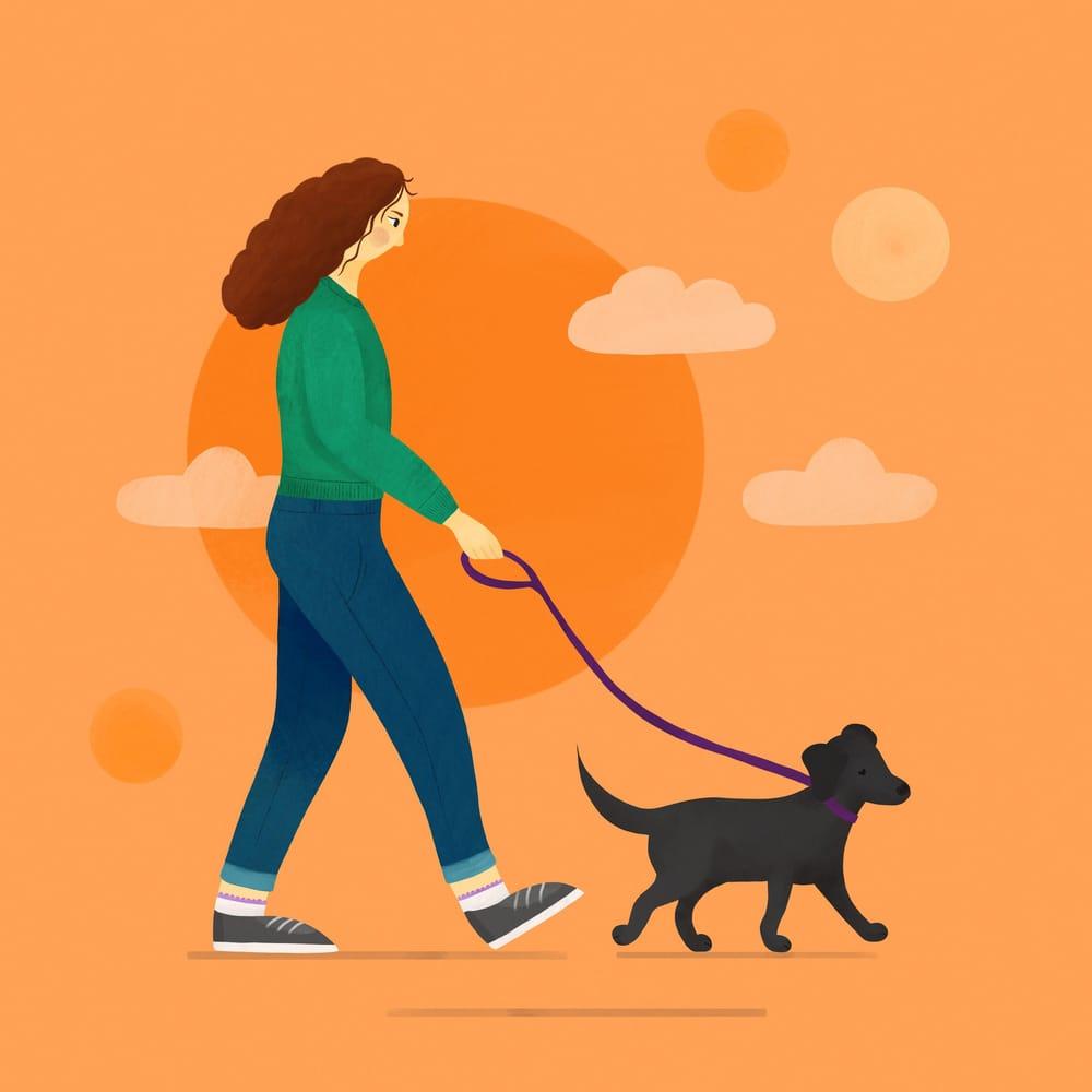Dog walker - image 2 - student project