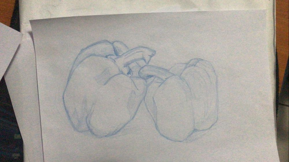 Contours & Foreshortening - image 4 - student project
