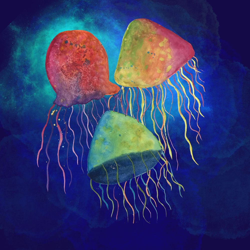 Jelly fish - image 1 - student project