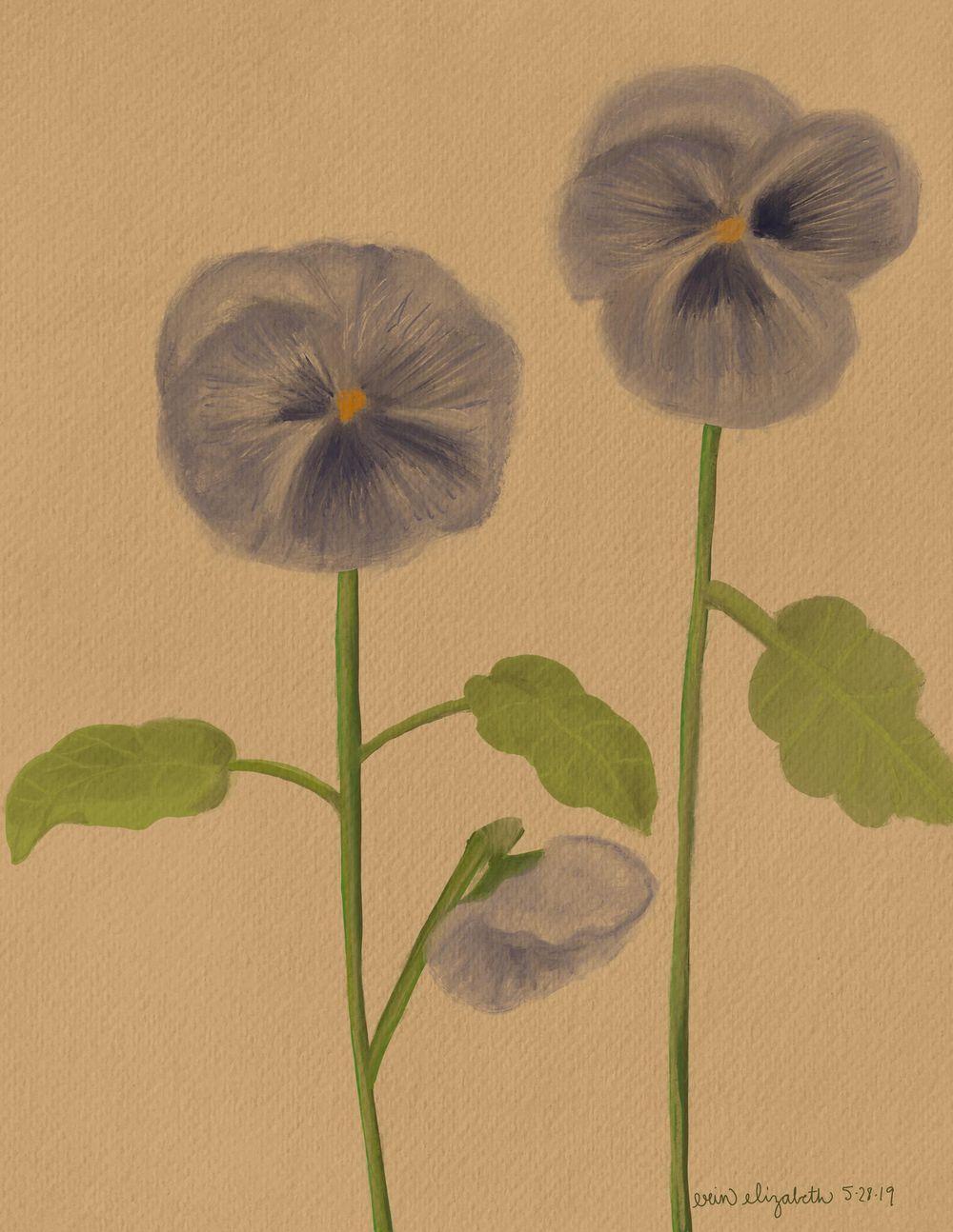 Vintage-Inspired Botanical Illustration - image 1 - student project