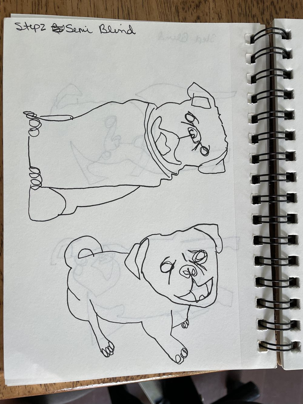 Line drawing practice - image 17 - student project
