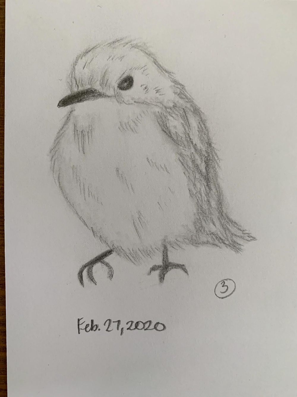 You can draw anything in three simple steps - image 1 - student project
