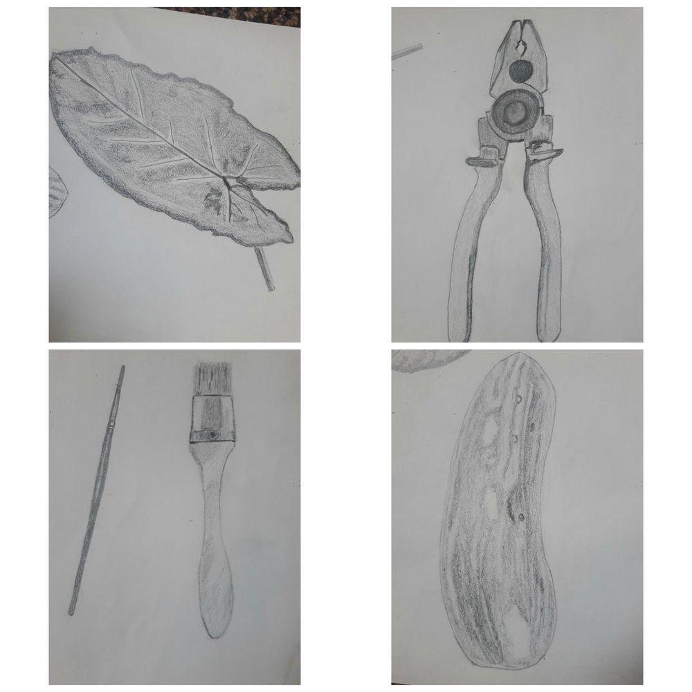 My 30 days drawing challenge  COMPLETED :) - image 8 - student project