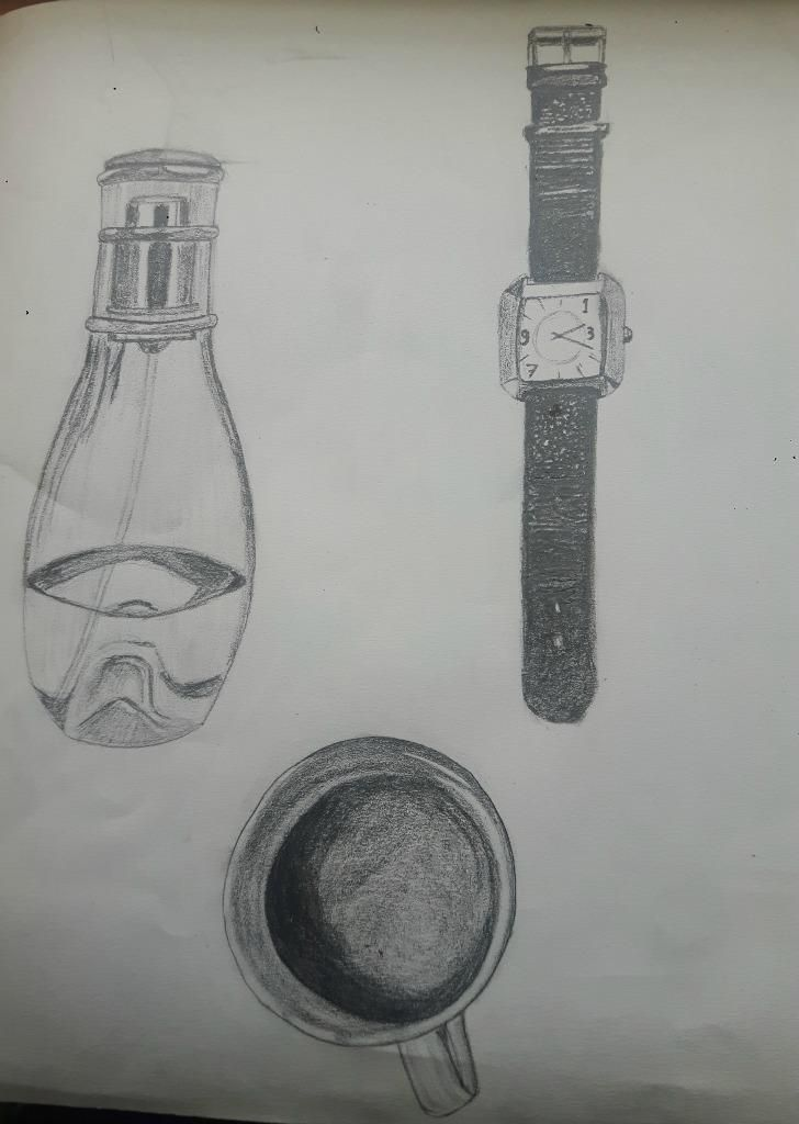 My 30 days drawing challenge  COMPLETED :) - image 7 - student project