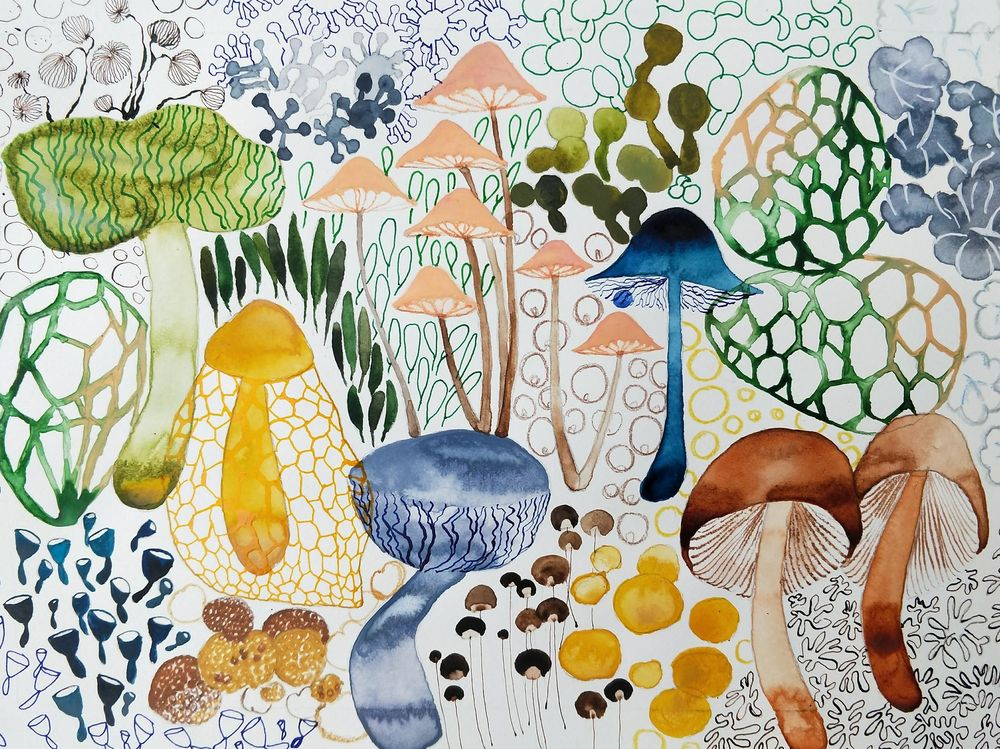 Magical Mushrooms - image 1 - student project