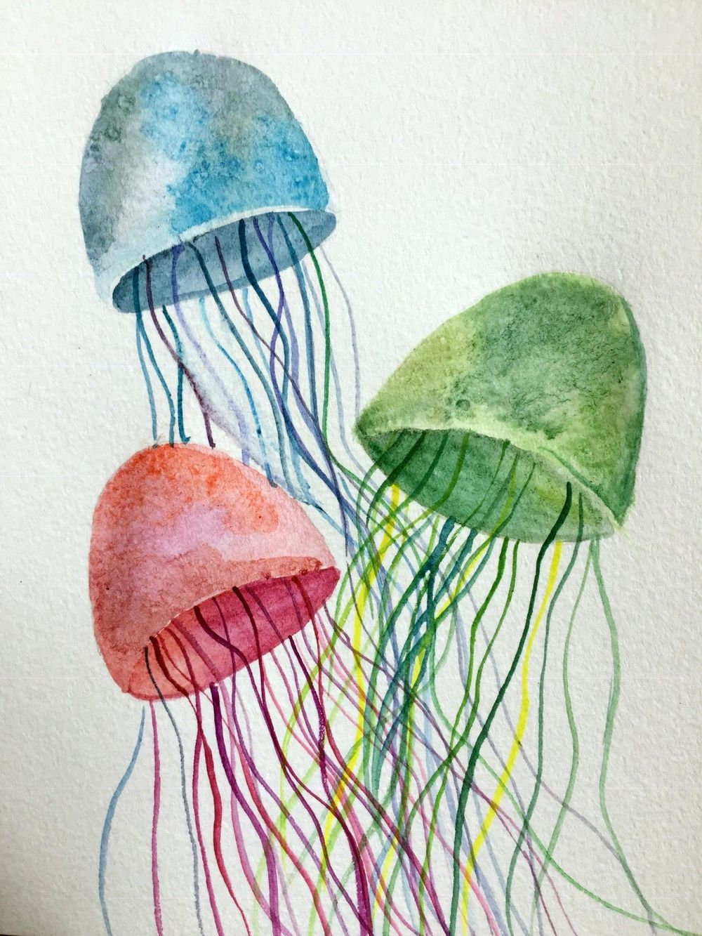 Jellyfish - image 1 - student project