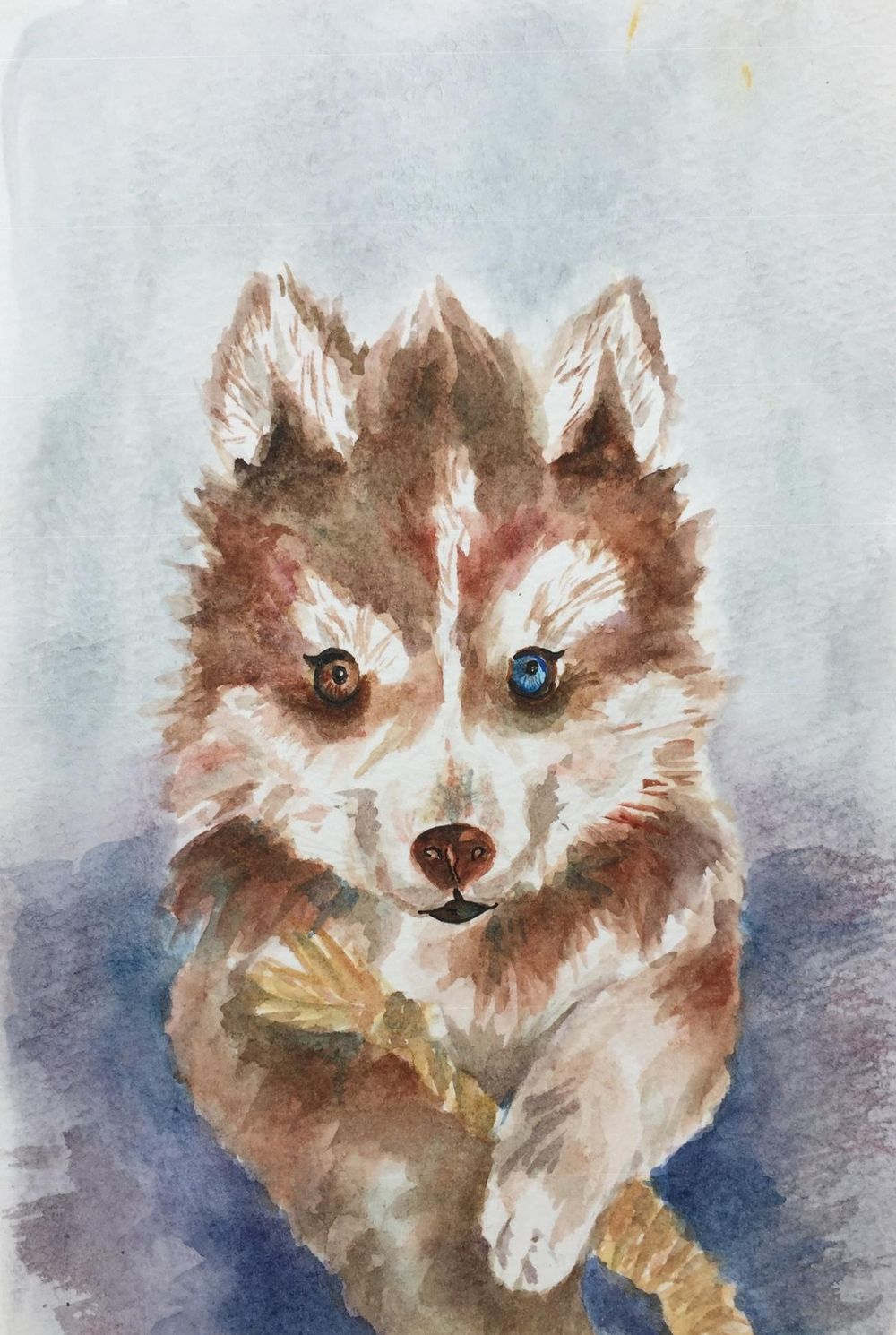 Watercolor dog - image 1 - student project