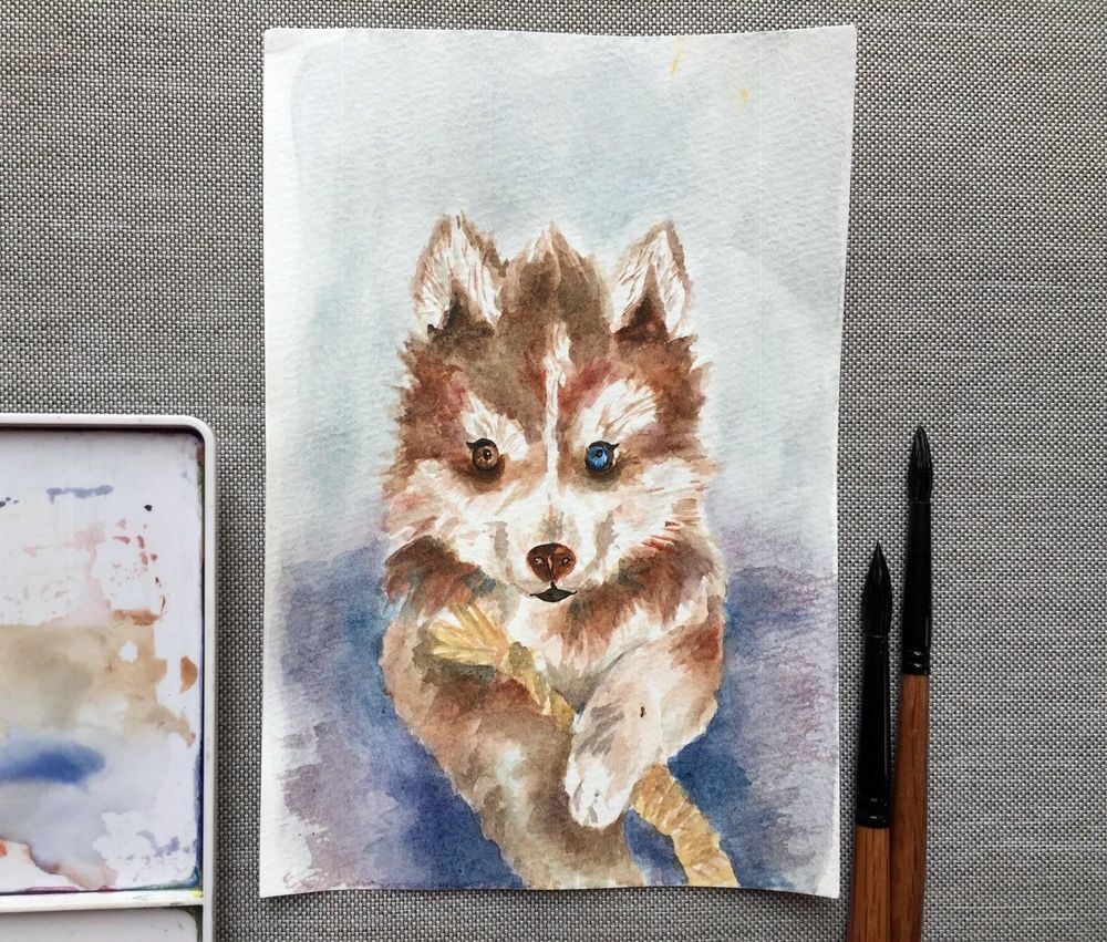 Watercolor dog - image 2 - student project