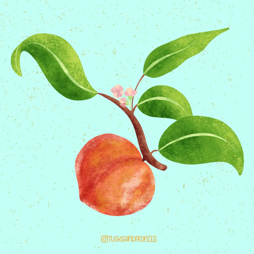 Peachy - image 1 - student project