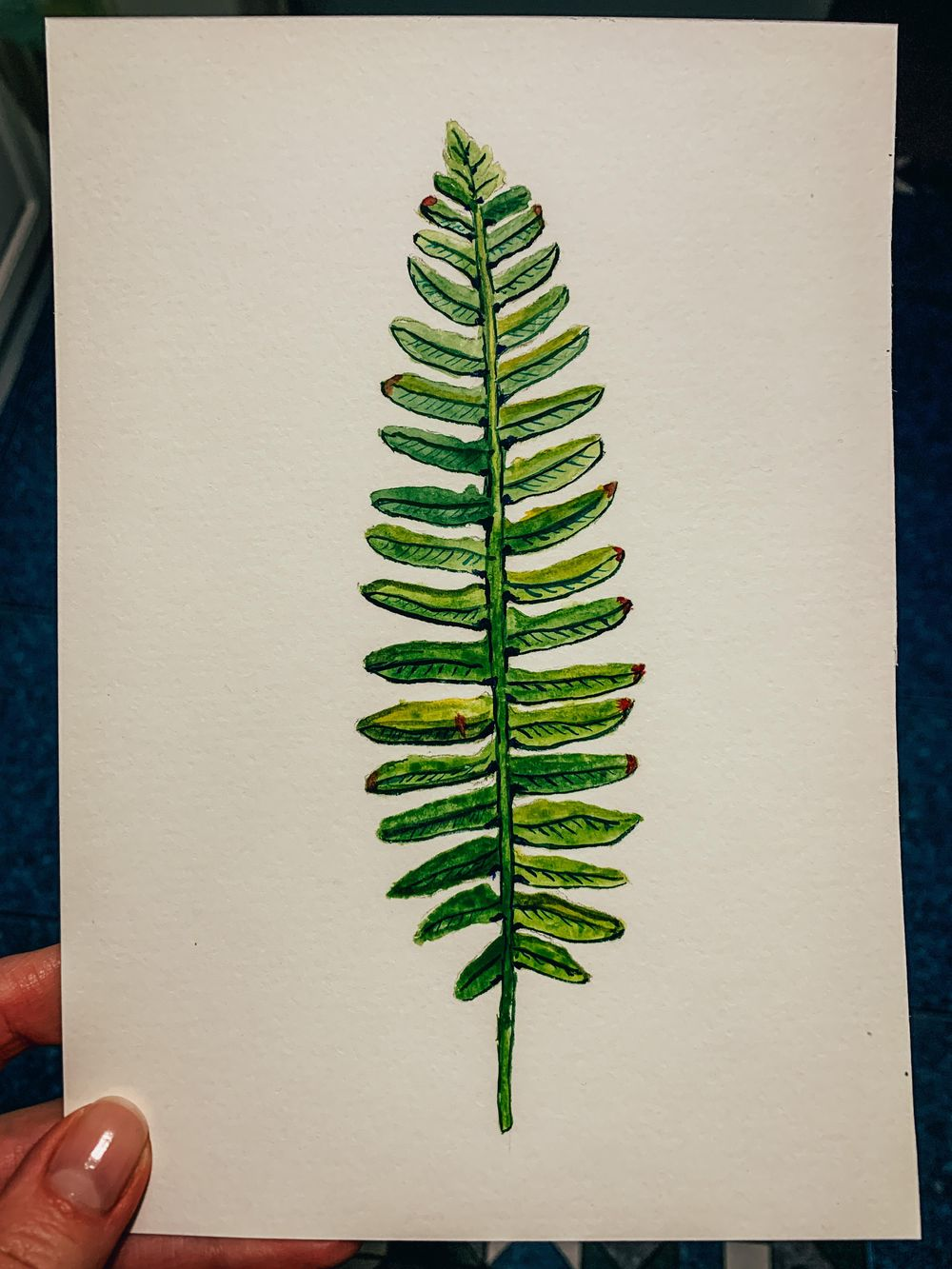 Fern with watercolour - image 1 - student project