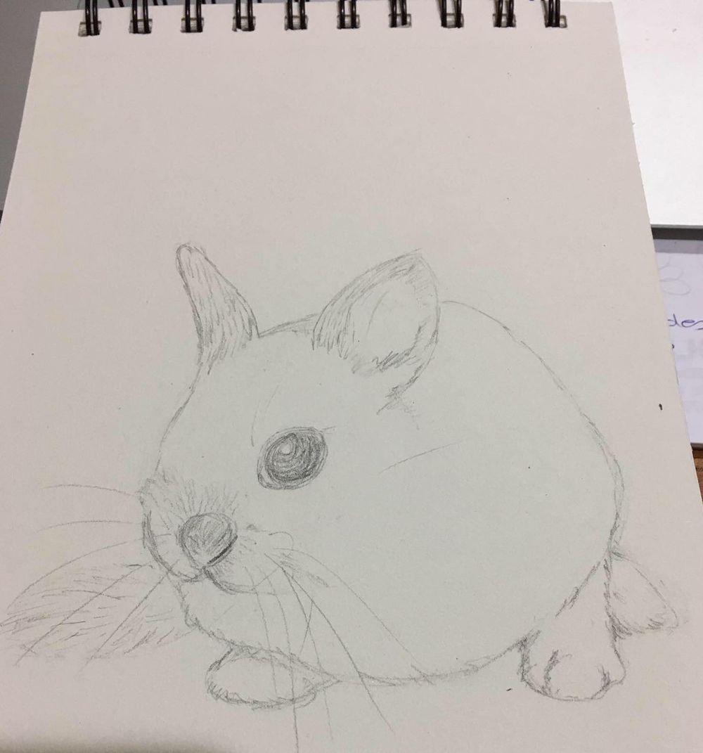 I can draw :) - image 1 - student project