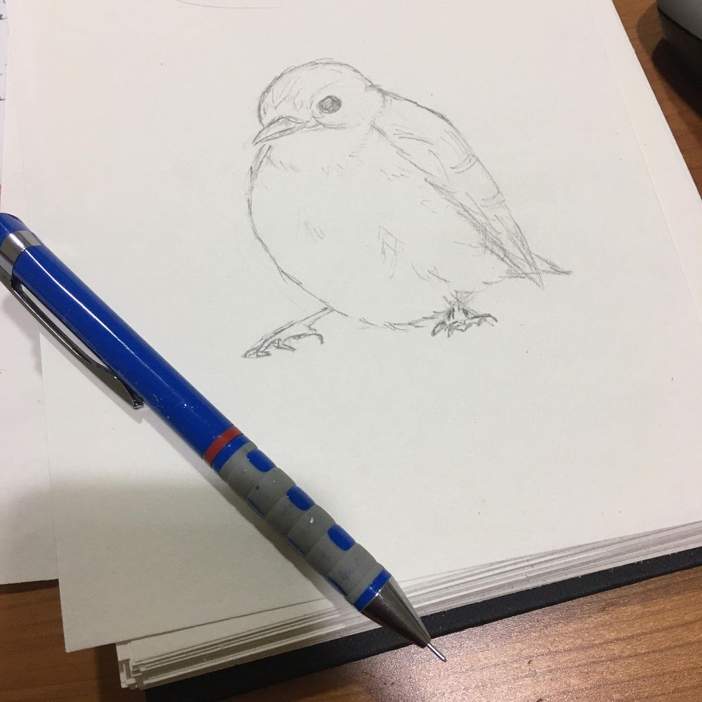 I can draw :) - image 2 - student project