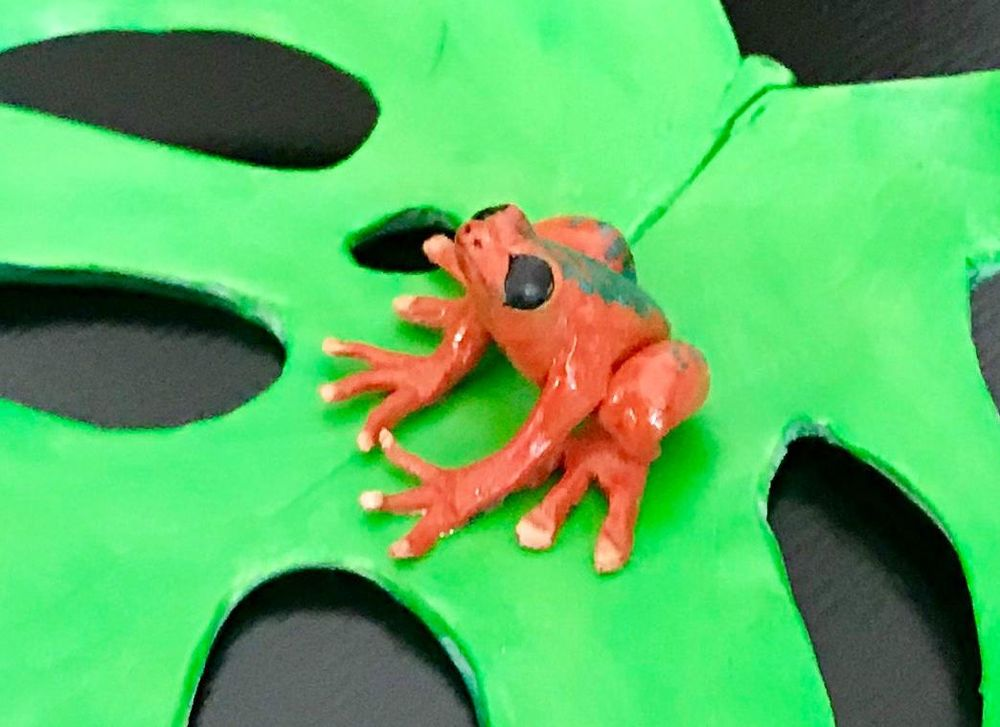 Miniature Frog Sculpture - image 2 - student project