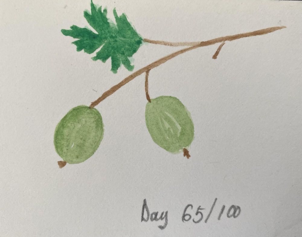 100 Day Watercolor Challenge - image 65 - student project
