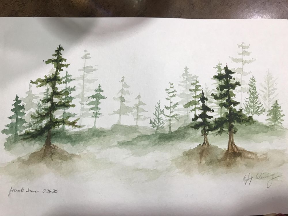 Pine Forest Scenes - image 3 - student project