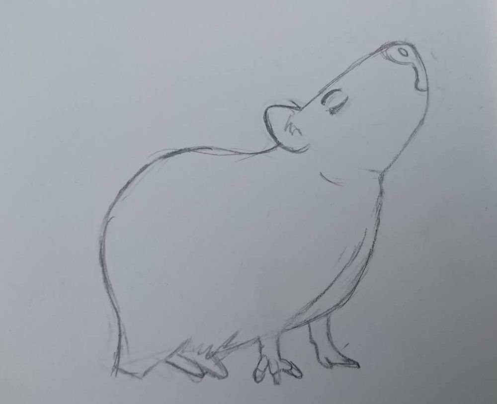 Capybara with attitude - image 1 - student project