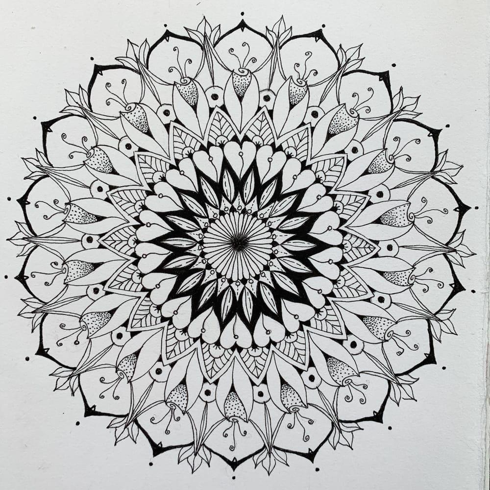 Botanical Mandala - image 5 - student project
