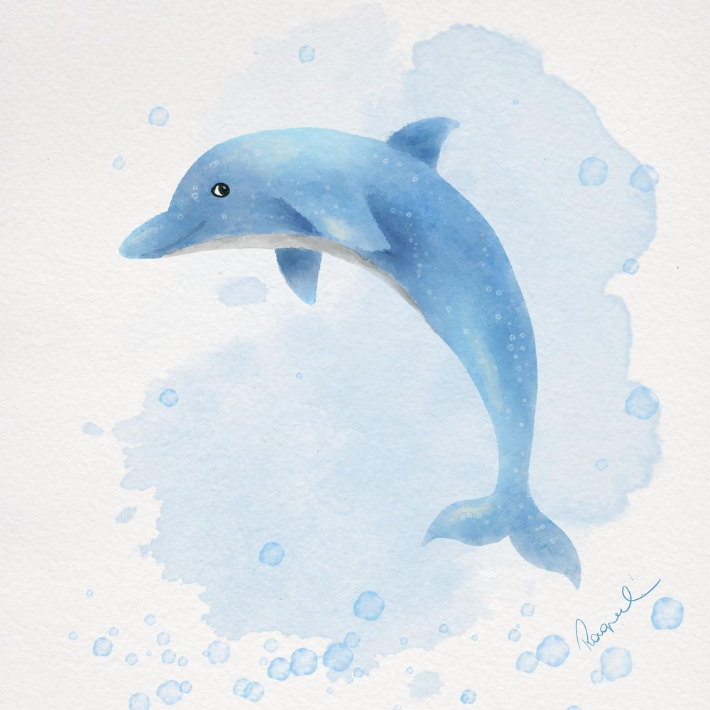 Walvis - image 2 - student project