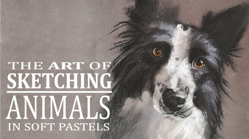 Sketching Animals in Soft Pastels | Coco - image 1 - student project