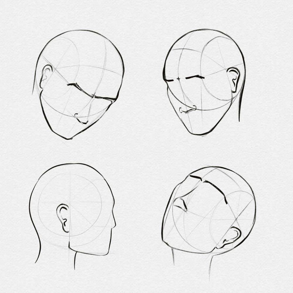 Loomis Method - image 1 - student project