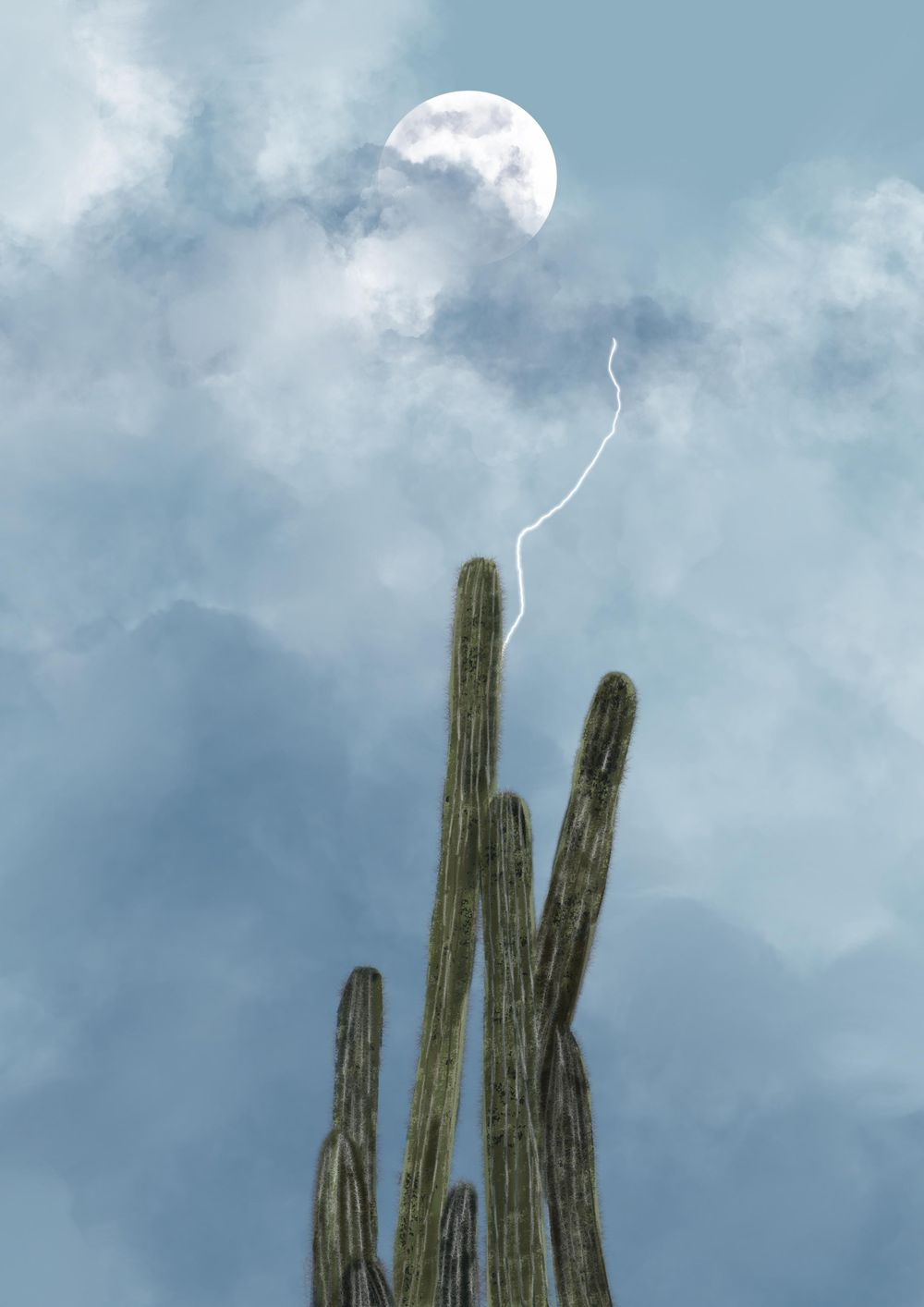 Desert Cactus - image 3 - student project