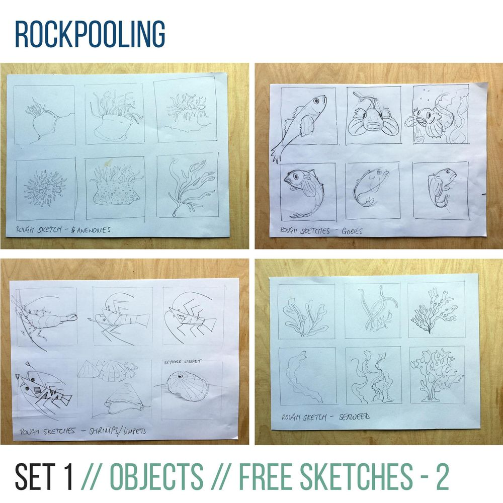 Rockpooling - image 2 - student project