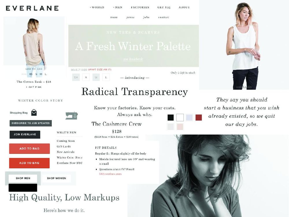 My Everlane Project - image 1 - student project