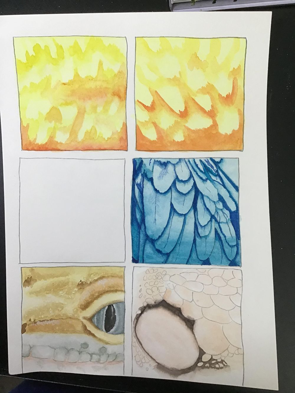 Animal Textures - image 2 - student project