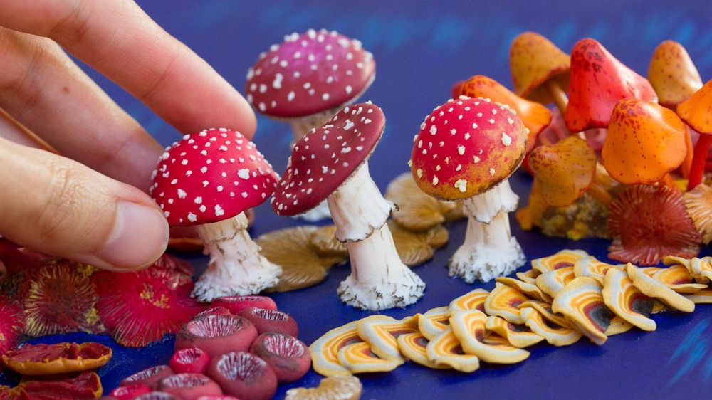 Sculpt Mushrooms from scratch with Polymer Clay - image 2 - student project
