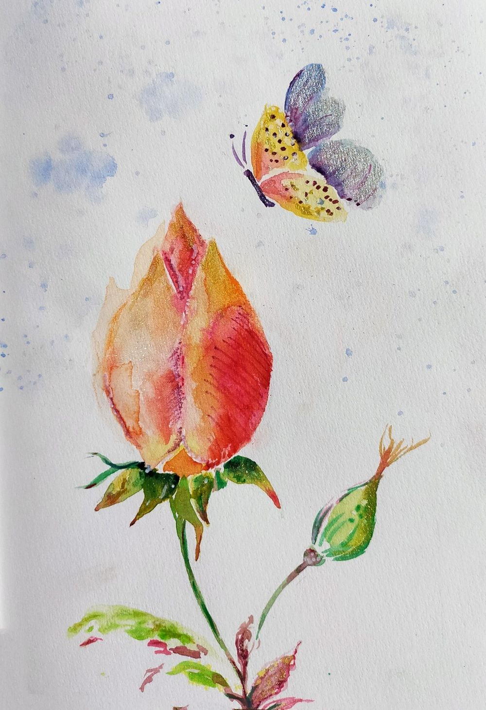 Watercolour special effects - image 5 - student project