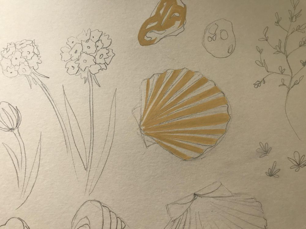 Seaside inspiration - image 5 - student project