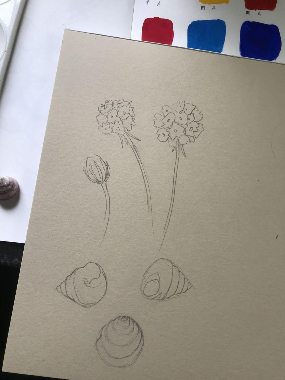 Seaside inspiration - image 1 - student project