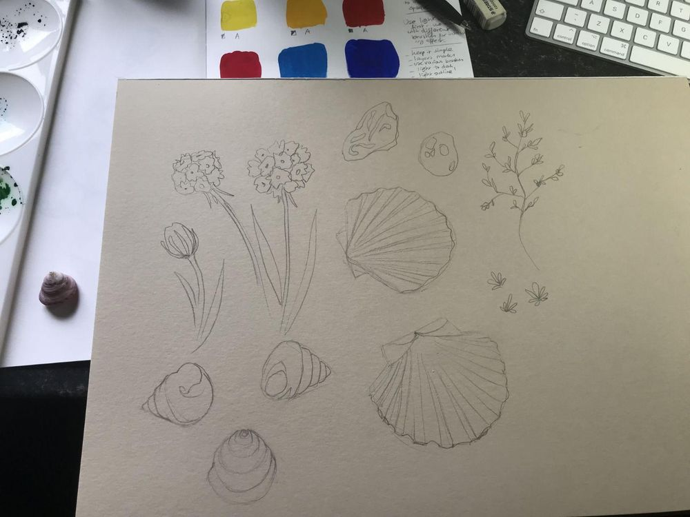Seaside inspiration - image 2 - student project