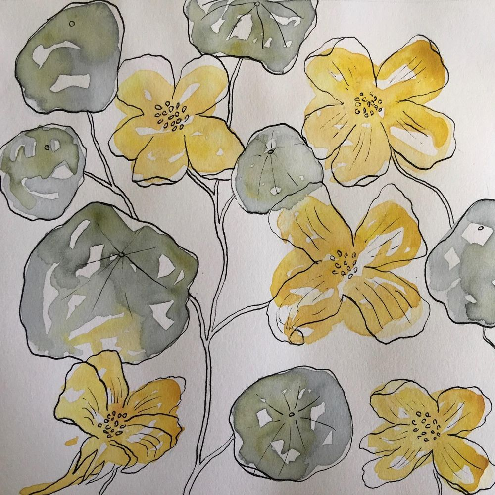 Watercolour and Ink Florals - image 2 - student project
