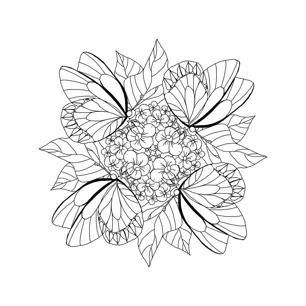 Butterfly coloring sheet from class! - image 1 - student project