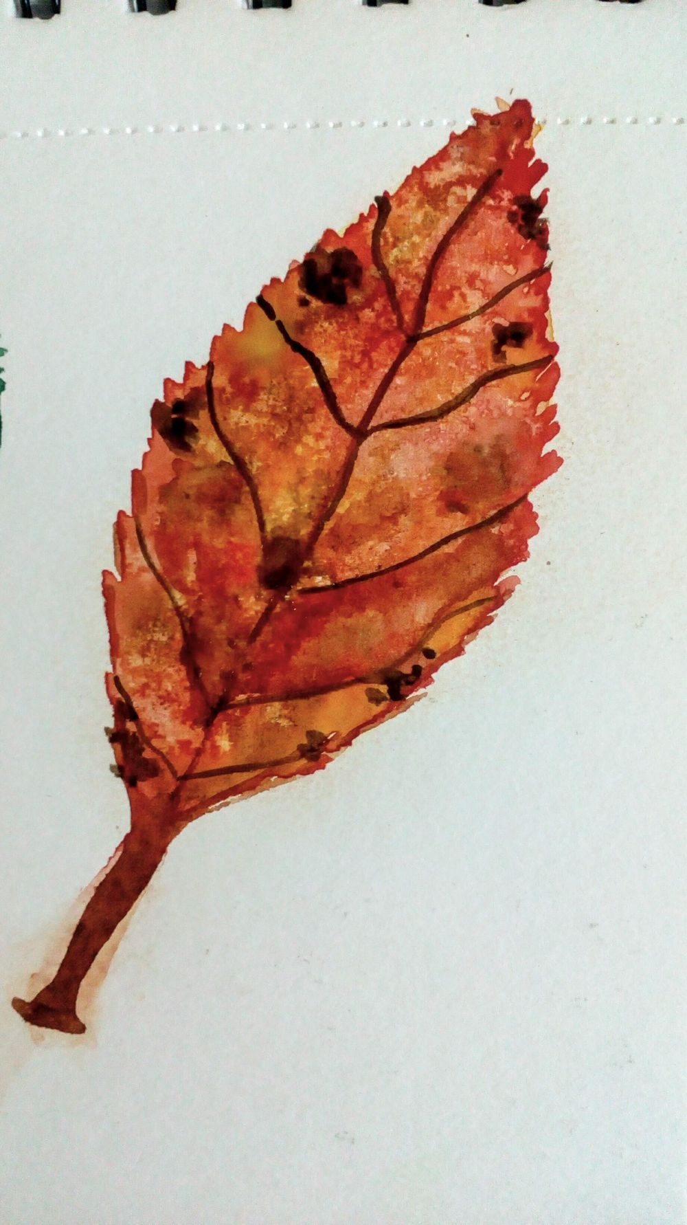 Watercolor Fall Elements - image 3 - student project