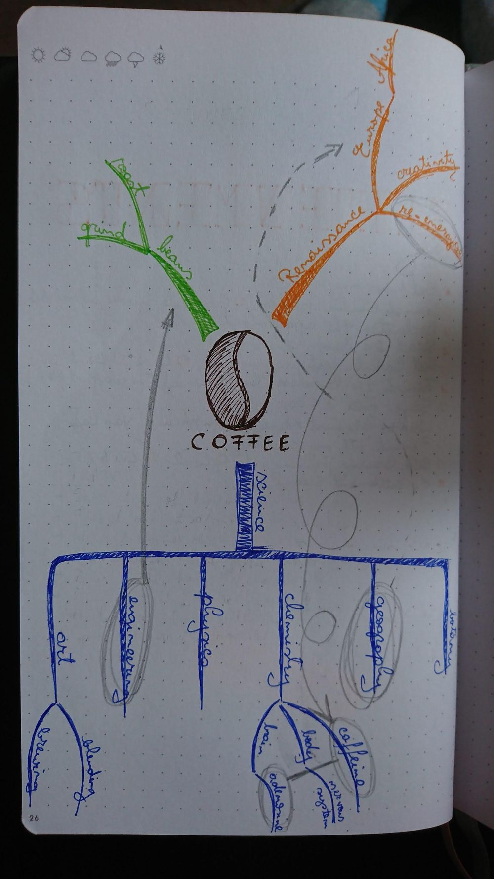 Mind Map about Coffee - image 1 - student project